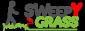 Sweepy Grass | La Brosse Électrique qui redresse les brins de votre Gazon Synthétique